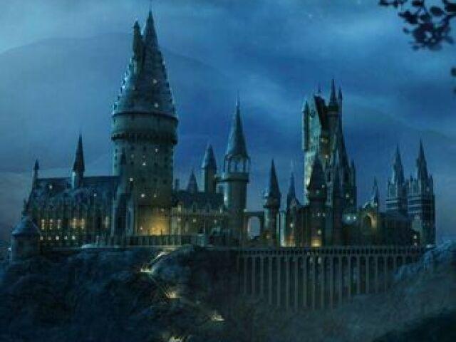 Qual seria o seu namorado em Hogwarts?