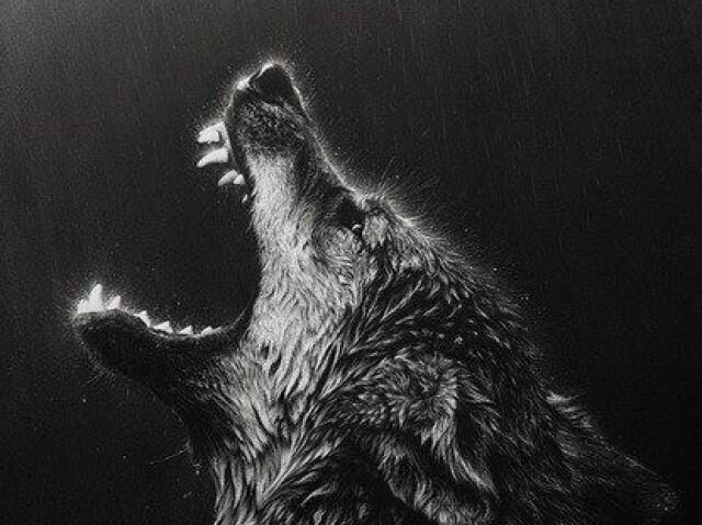 Qual tipo de lobo você é?