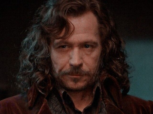 Quantos por cento você seria amigo de Sirius Black?