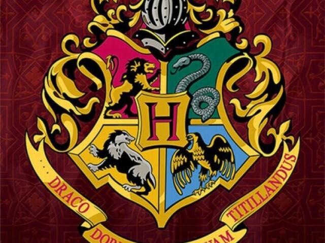 Qual sua casa de Harry Potter?