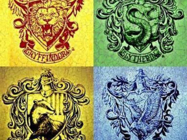 Qual seria sua casa em Hogwarts? 👍