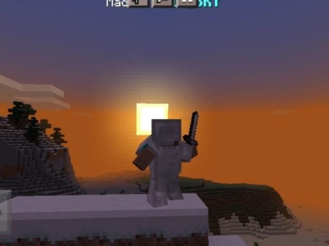 Você conhece o Minecraft?