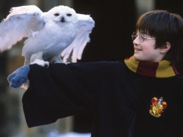 Você sabe tudo sobre Harry Potter e a Pedra Filosofal?