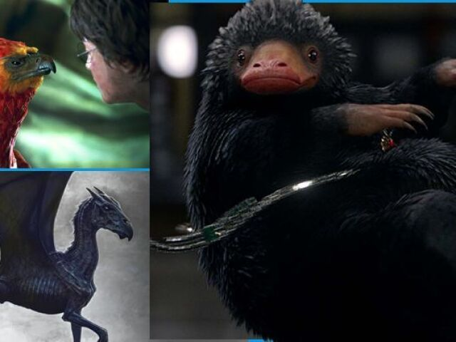 Você realmente conhece as criaturas mágicas de Harry Potter e Animais Fantásticos