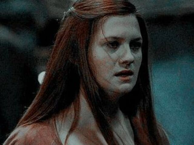 Você sabe tudo sobre a Gina Weasley?