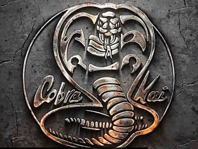 Você acompanha bastante Cobra Kai?