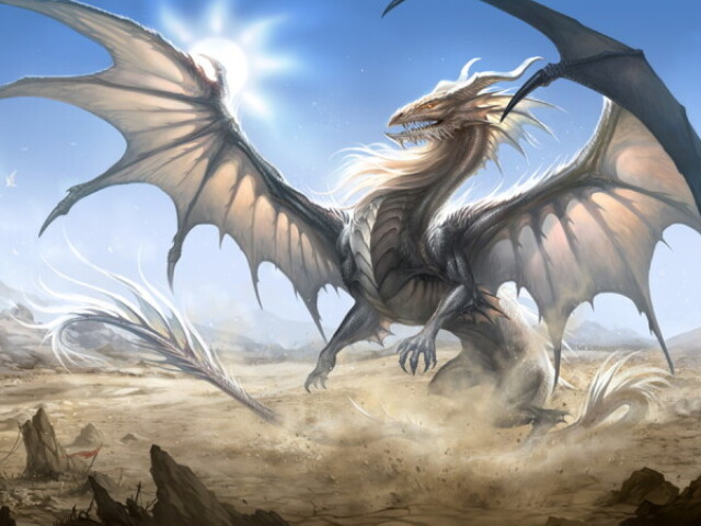 Que tipo de dragão você seria?
