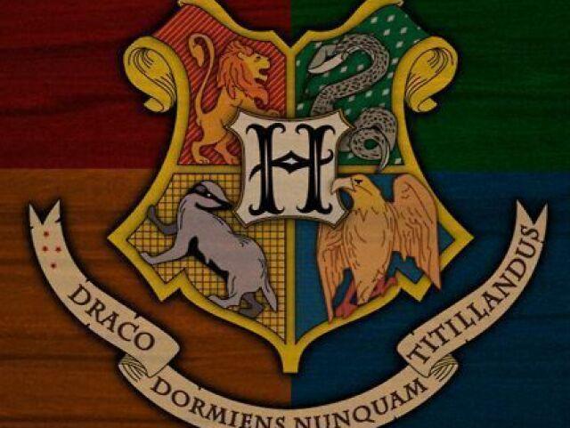 Qual seria sua casa em Harry Potter?