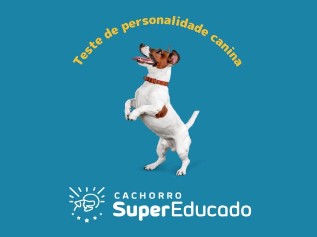 Teste de Perfil de Personalidade Canina - Cachorro Super Educado