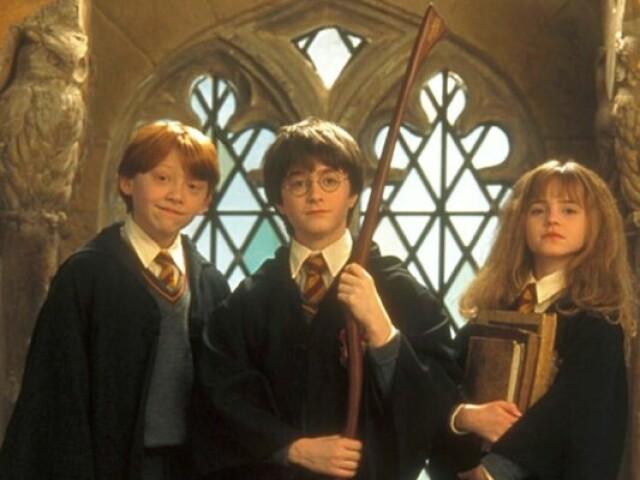 Você realmente gosta de Harry Potter ?