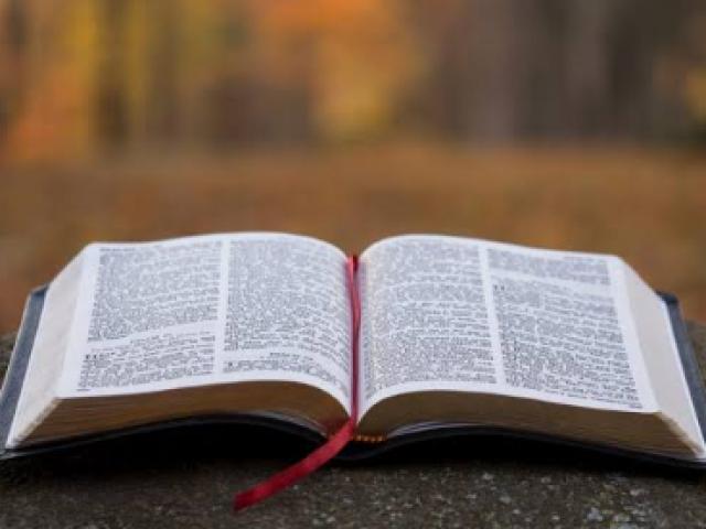 Livro de Habacuque (nível fácil)
