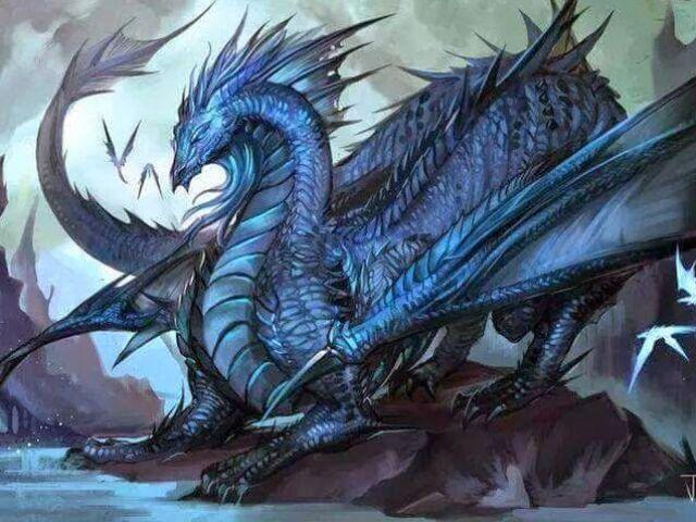 Qual seria seu Dragão?
