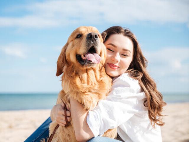 Crie sua vida com seu cachorro