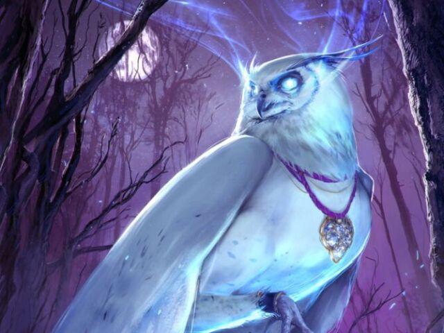 Qual é seu animal místico espiritual?