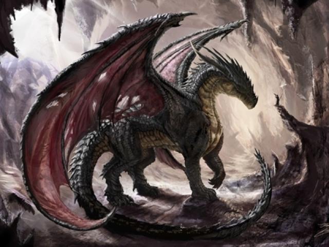 Qual dragão você teria de estimação?