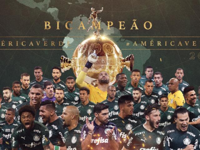 Você realmente é fanático pelo Palmeiras?