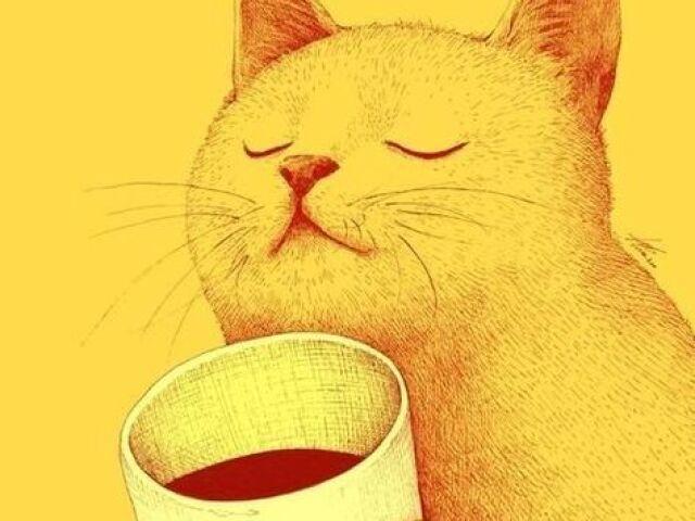 💫 Monte seu cat café!!💫