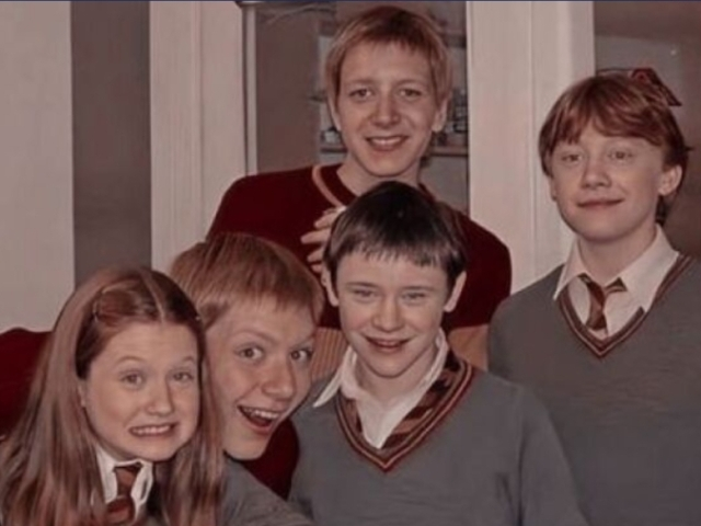 {°•Qual dos Weasleys seria seu amigo?•°}
