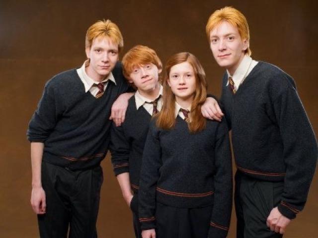 Qual dos Weasleys seria seu amigo?