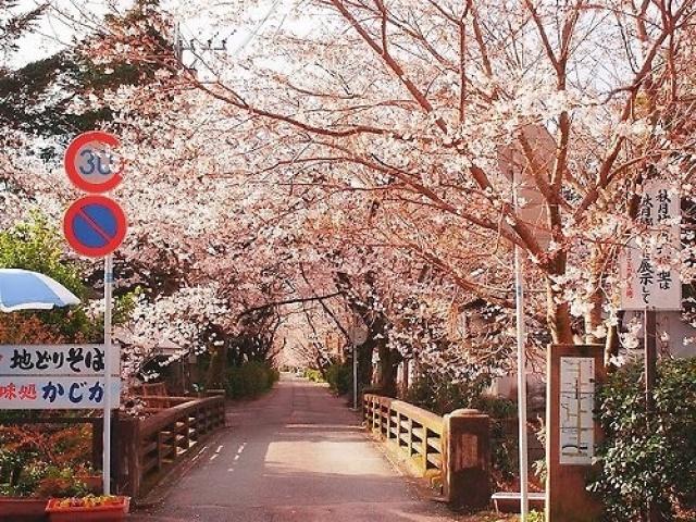Intercâmbio na Coréia do Sul