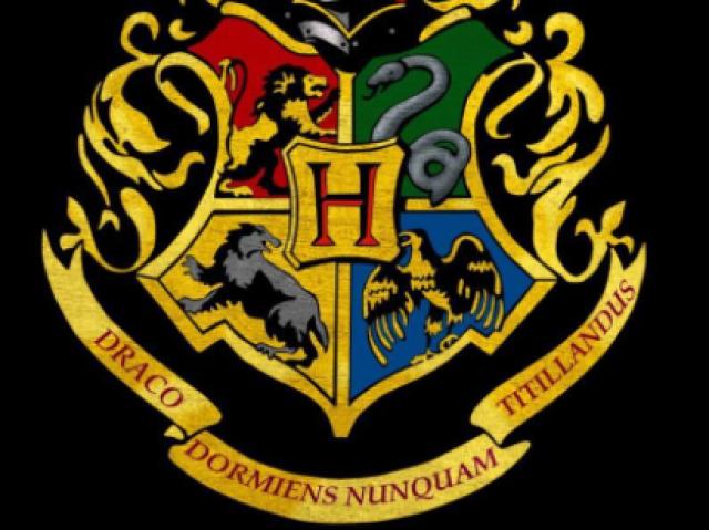 Qual seria sua casa em Hogwarts? 💛💚💙💕