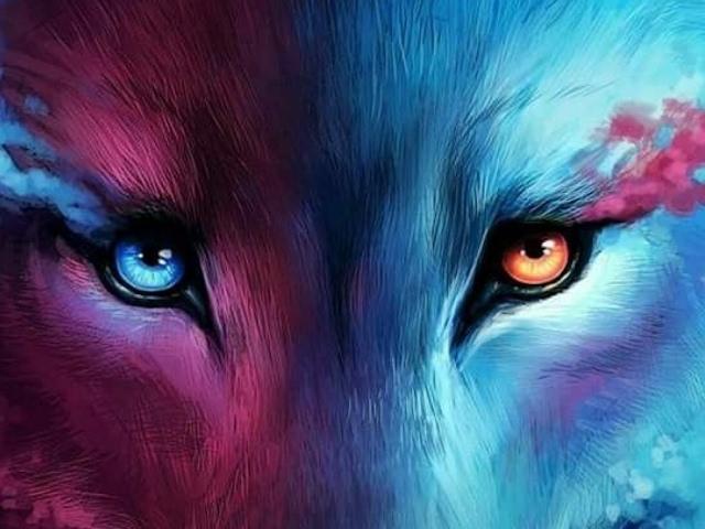 Qual é o seu animal protetor?