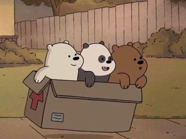 """⌜Escolha uma imagem e falarei quem você seria de """"Ursos sem Curso""""⌝"""