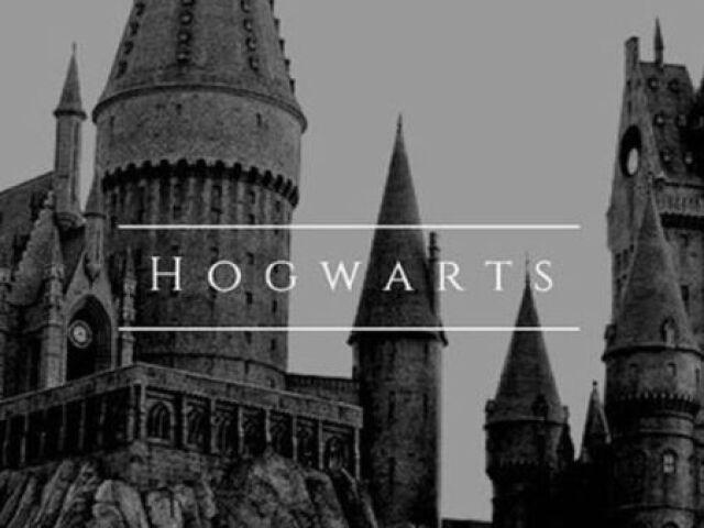 Como seria sua vida em Hogwarts?