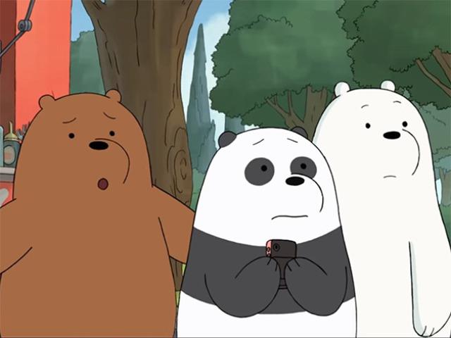 Você seria o Pardo, Panda ou Polar?