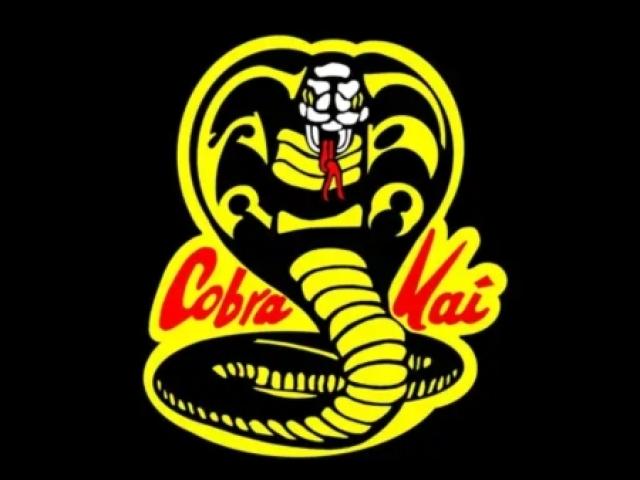 Quem conhece Cobra Kai?
