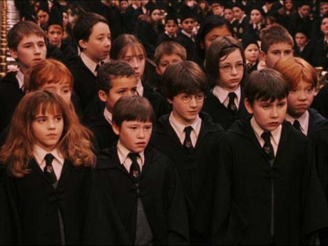 Quem você seria em Harry Potter??